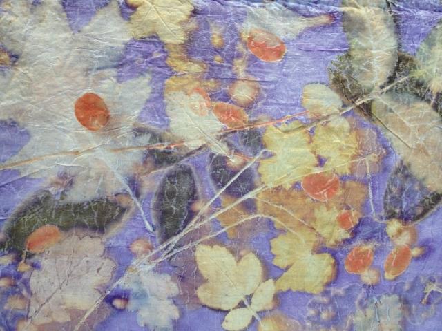 Ecoprint Mordant Botanical Dye plantaardig verven