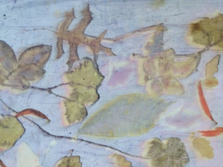 EcoPrint Oak Geranium Roos Rose Carla-van-Belle