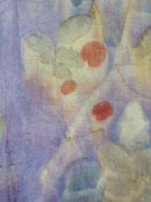 14 Detail Botanical Print Natural Dye