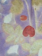 16 Detail Botanical Print Natural Dye