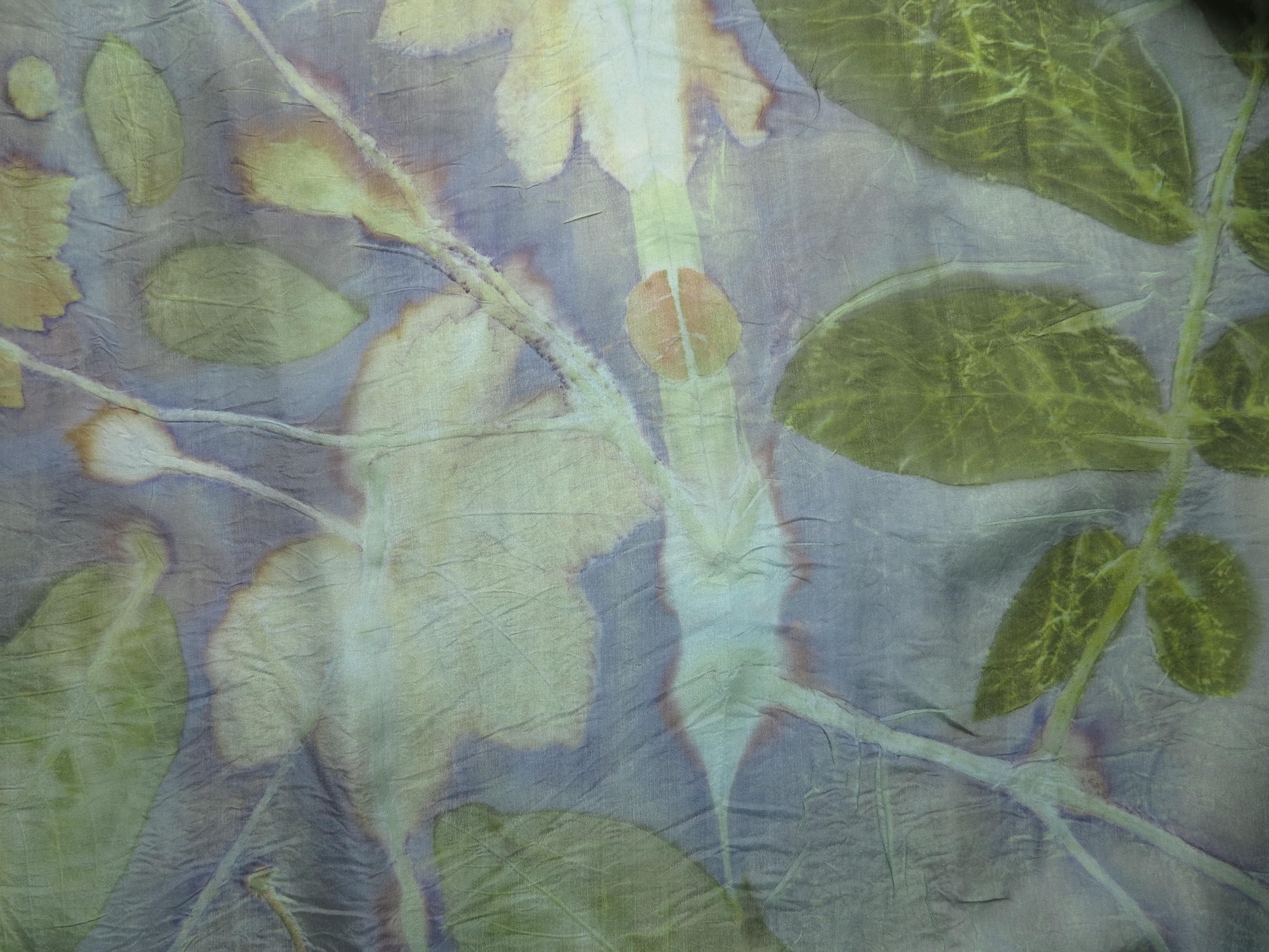 blauwhoutdeken op wouw en indigo