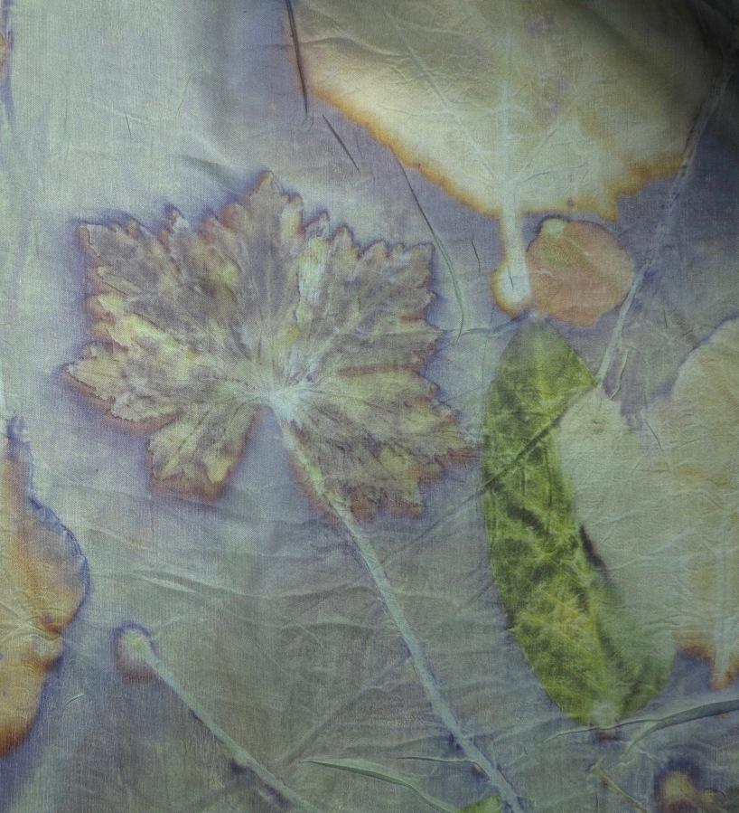 printing with geranium