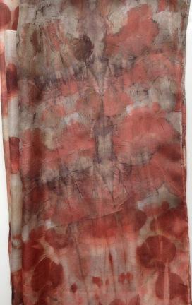 botanical print eucalyptus