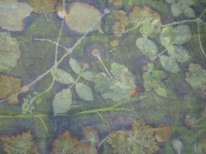 EcoPrint Green
