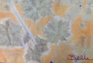 oranje ecoprint wouw meekrap