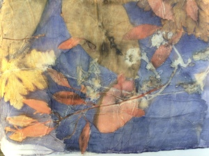 EcoPrint zijde