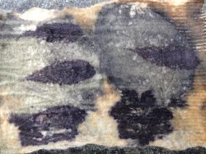 ecoprint op wol