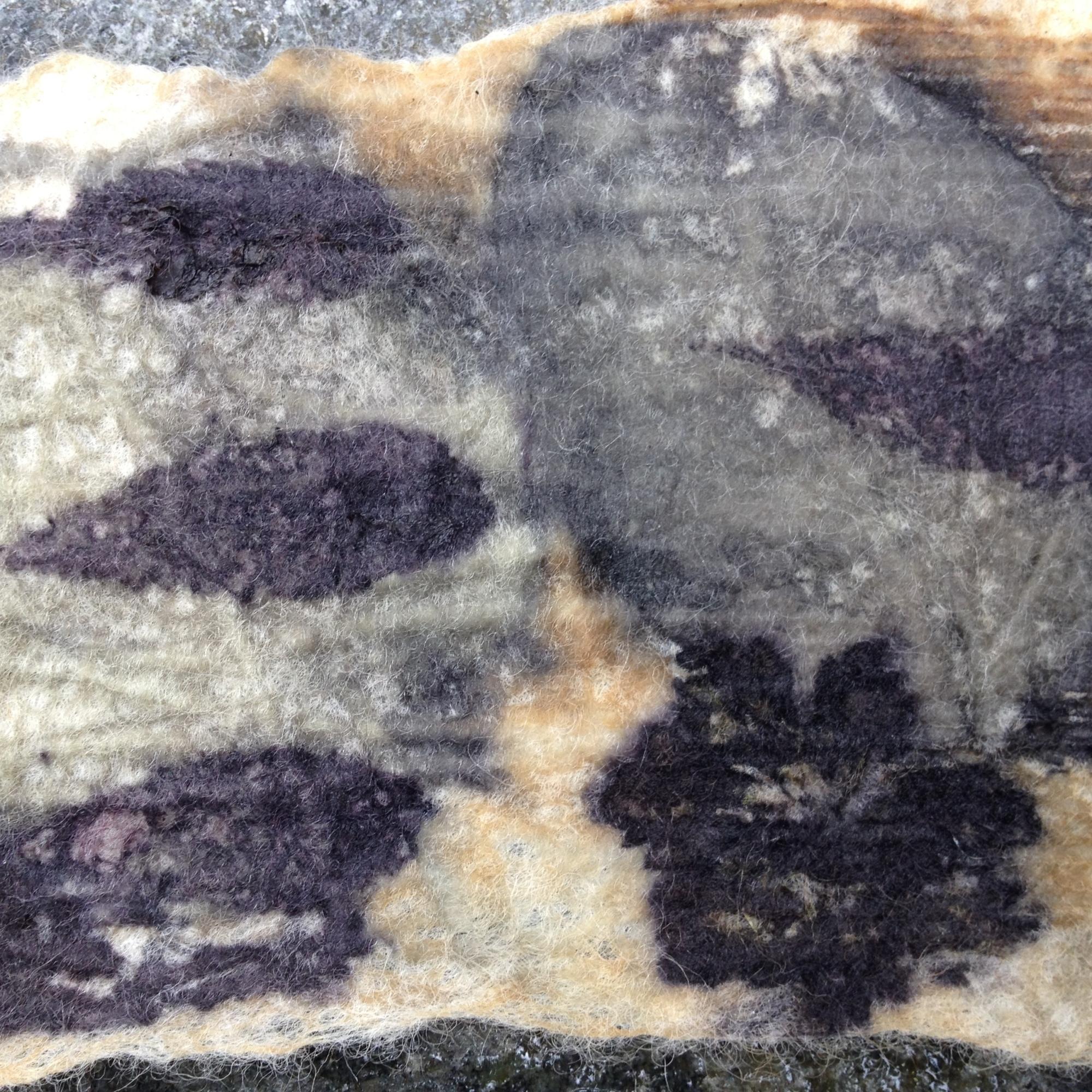 ecoprint wol