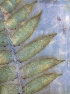 indigo EcoPrint sumac fluweelboom
