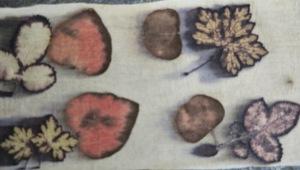 Scherpe EcoPrints bladeren afdrukken op katoen