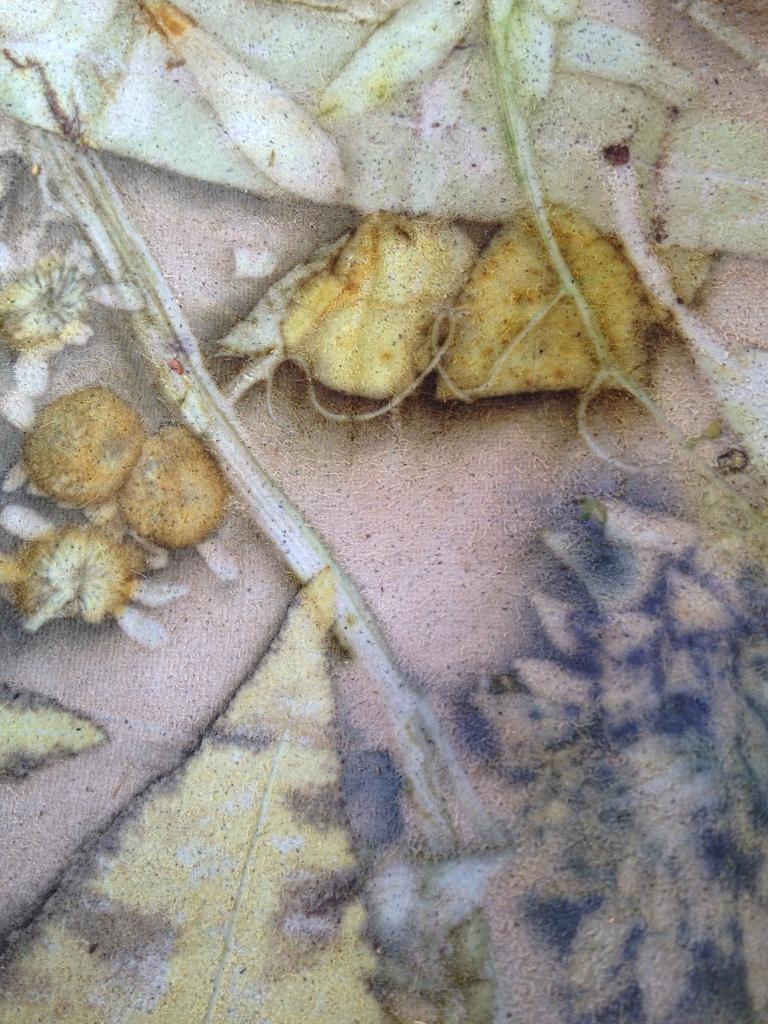 Ecoprinten leer